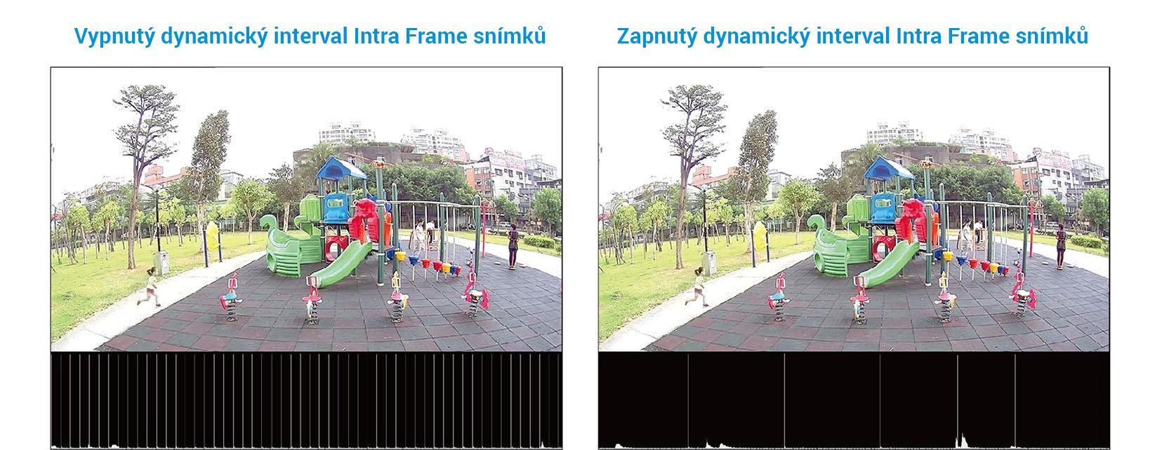 Dynamický interval intra snímků