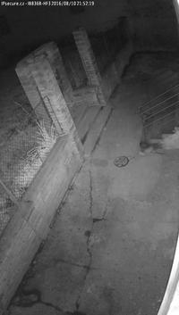 Záběr IP kamery VIVOTEK IB836B-HF3